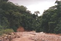 The brown river inside Calilegua