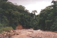 The brown river inside Calilegua
