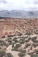A view of the Quebrada